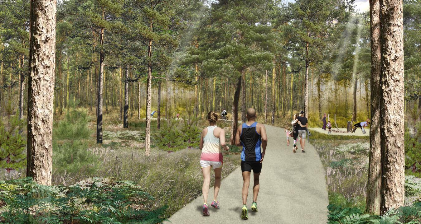 LU Parksiedlung Wald a8